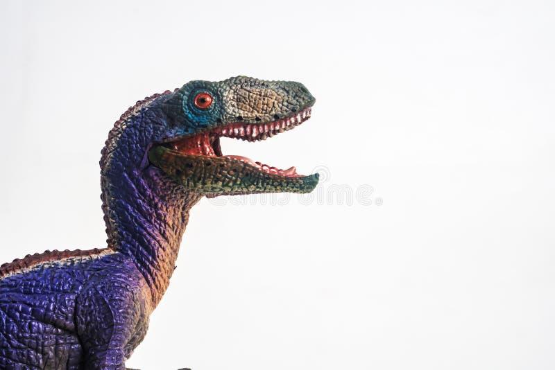 Δεινόσαυρος, Velociraptor στο άσπρο υπόβαθρο στοκ φωτογραφία