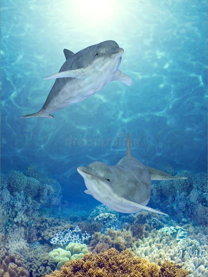 δελφίνια ευτυχή απεικόνιση αποθεμάτων