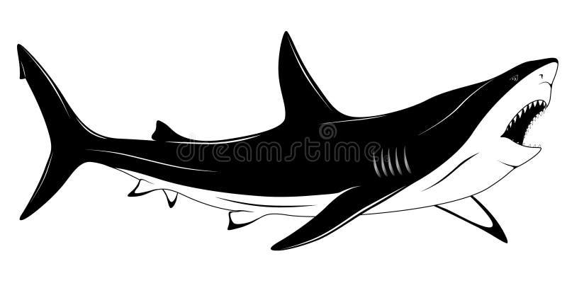 δερματοστιξία καρχαριών διανυσματική απεικόνιση