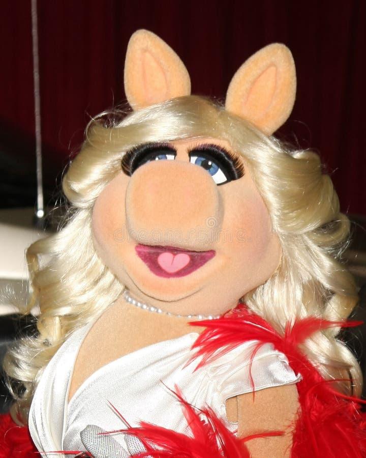 δεσποινίδα muppets piggy στοκ φωτογραφίες