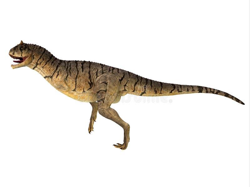 Δευτερεύον σχεδιάγραμμα δεινοσαύρων sastrei Carnotaurus στοκ φωτογραφία