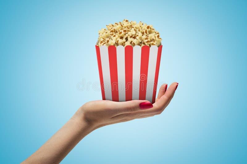 Δευτερεύουσα κινηματογράφηση σε πρώτο πλάνο του χεριού της γυναίκας που αντιμετωπίζει επάνω και που κρατά το ριγωτό popcorn κιβώτ διανυσματική απεικόνιση