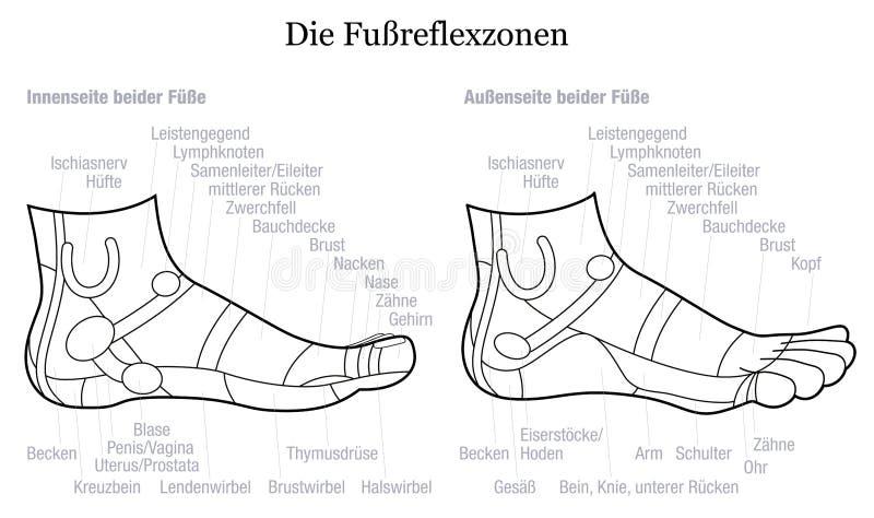 Δευτερεύουσα περιγραφή γερμανικά άποψης σχεδιαγράμματος Reflexology ποδιών ελεύθερη απεικόνιση δικαιώματος