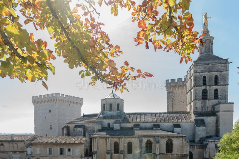 Δευτερεύουσα πρόσοψη του καθεδρικού ναού και του παλατιού των παπάδων Αβινιόν στοκ φωτογραφία με δικαίωμα ελεύθερης χρήσης