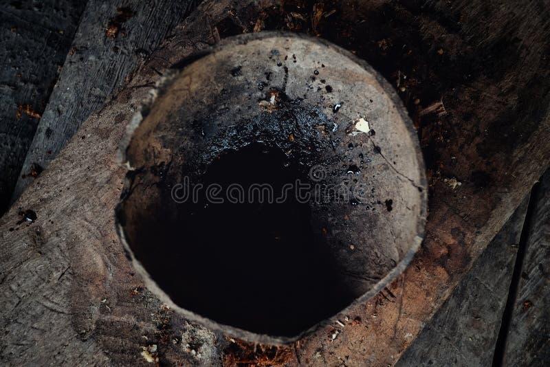 Δηλητήριο ζουγκλών για το κυνήγι σε ένα φλυτζάνι καρύδων στοκ φωτογραφίες
