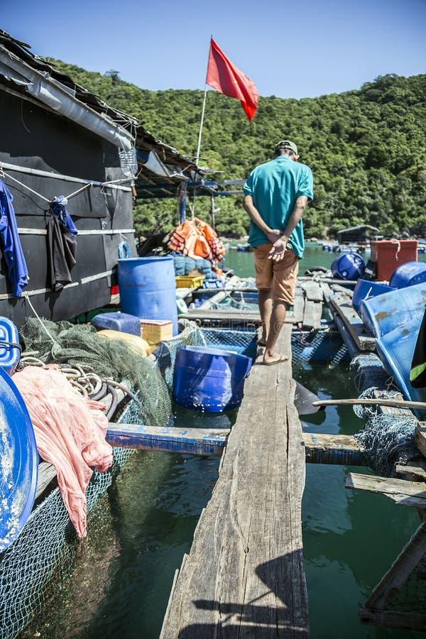 Δηλητήριο που καλλιεργεί στη θάλασσα κοντά Nam du Island στοκ εικόνα με δικαίωμα ελεύθερης χρήσης
