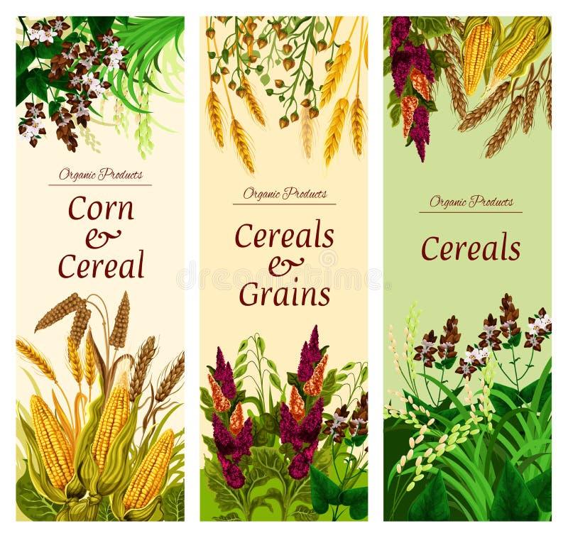 Δημητριακά, σιτάρι και φυτικό έμβλημα των υγιών τροφίμων διανυσματική απεικόνιση