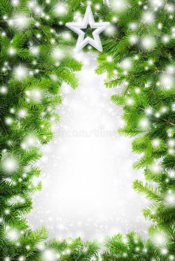 Δημιουργικά σύνορα χριστουγεννιάτικων δέντρων στοκ φωτογραφίες