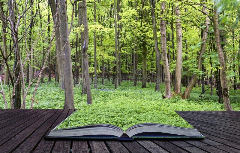 Δημιουργικές σελίδες έννοιας του δονούμενου πολύβλαστου πράσινου δάσους ανοίξεων βιβλίων στοκ φωτογραφία