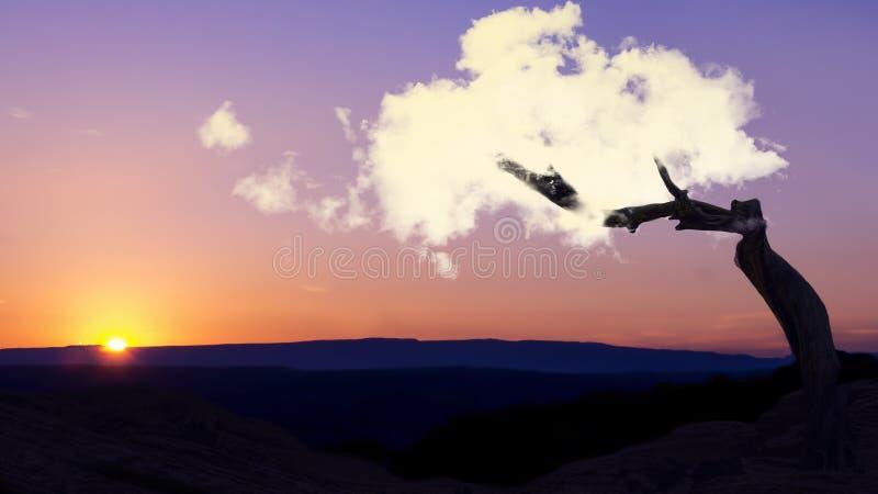Δημιουργική ανάπτυξη σύννεφων έννοιας ονείρου από το δέντρο σκιαγραφιών με τη χαλάρωση του ηλιοβασιλέματος της βιομηχανίας γιόγκα στοκ φωτογραφίες με δικαίωμα ελεύθερης χρήσης