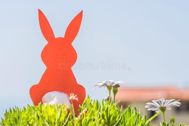 Δημιουργική φωτογραφία έννοιας Πάσχας του κόκκινου κουνελιού εγγράφου στα chamomile λουλούδια και της πράσινης χλόης στο υπόβαθρο στοκ φωτογραφία με δικαίωμα ελεύθερης χρήσης