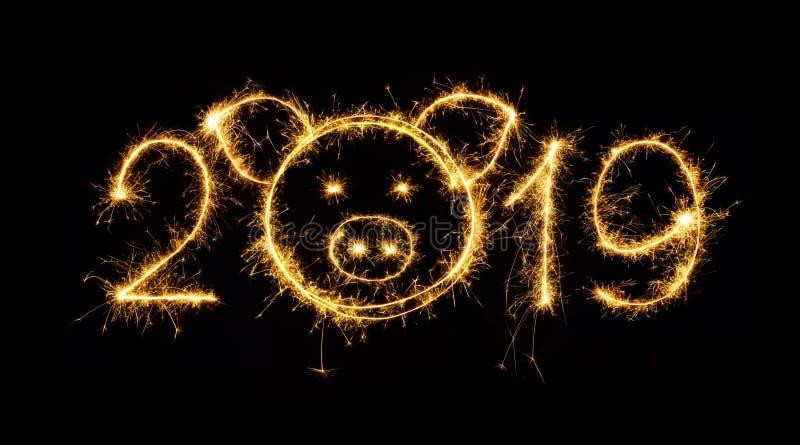 Δημιουργικός αριθμός 2019 σπινθηρίσματος με το κεφάλι του χοίρου στοκ φωτογραφία