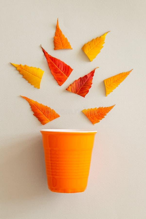 Δημιουργικός γδάρτε βάζει του πορτοκαλιών φλυτζανιού και των φύλλων στοκ φωτογραφίες με δικαίωμα ελεύθερης χρήσης