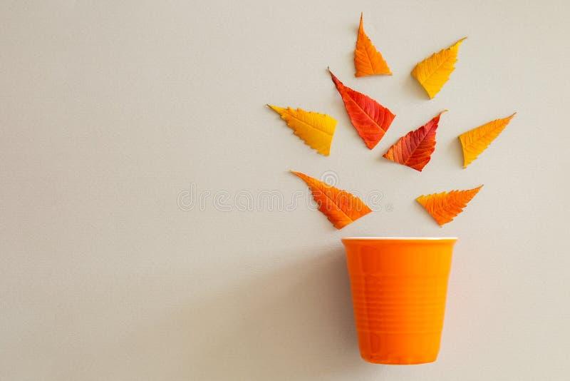 Δημιουργικός γδάρτε βάζει του πορτοκαλιών φλυτζανιού και των φύλλων στοκ φωτογραφία