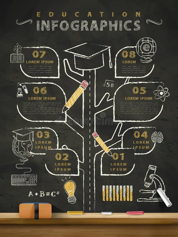 Δημιουργικός πίνακας infographics εκπαίδευσης διανυσματική απεικόνιση