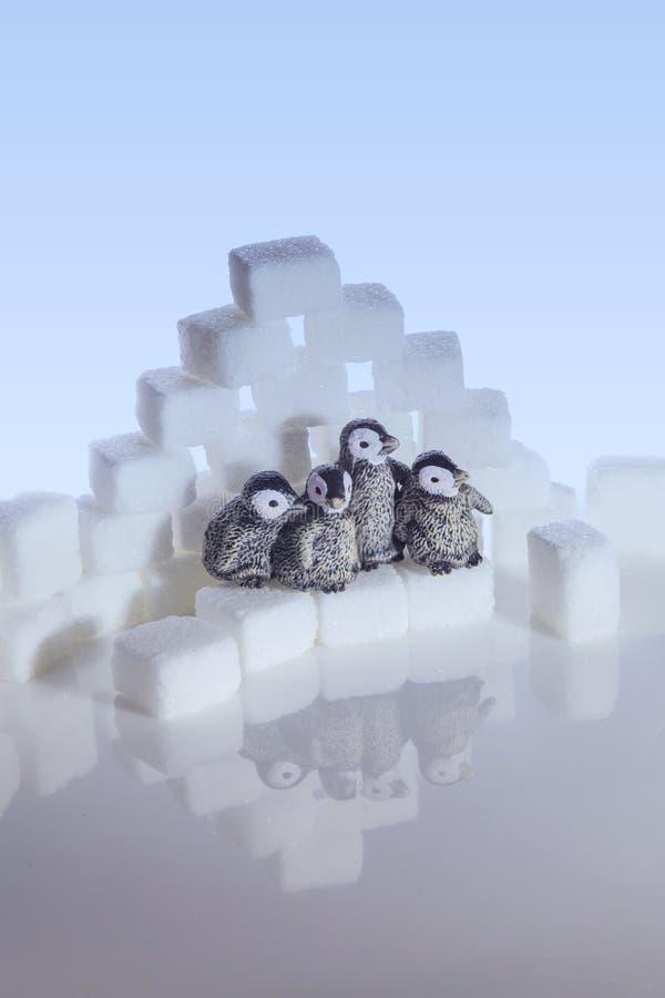 Δημιουργικός πυροβολισμός των κύβων ζάχαρης και penguins στοκ φωτογραφία