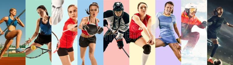 Δημιουργικό κολάζ που γίνεται με τα διαφορετικά είδη αθλητισμού στοκ εικόνα