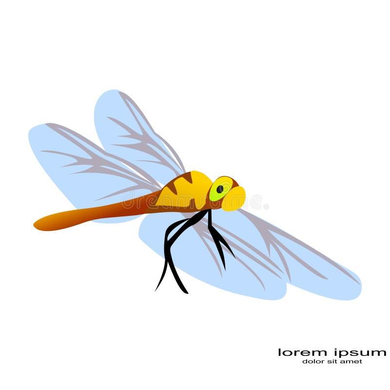 Δημιουργικό λογότυπο λιβελλουλών σχεδίου δειγμάτων απεικόνιση αποθεμάτων