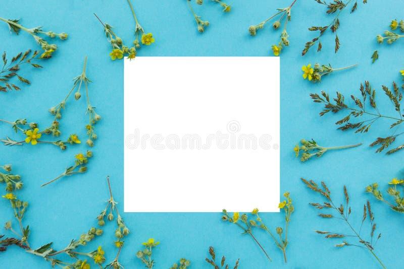 Δημιουργικό σχεδιάγραμμα φιαγμένο από άγρια λουλούδια και φύλλα με τη σημείωση καρτών εγγράφου Επίπεδος βάλτε απομονωμένο έννοια  στοκ εικόνες