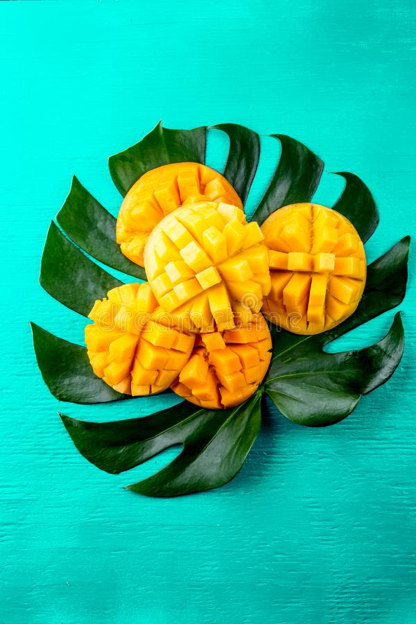 Δημιουργικό σχεδιάγραμμα φιαγμένο από μάγκο θερινών τροπικό φρούτων και τροπικά φύλλα στο τυρκουάζ υπόβαθρο Επίπεδος βάλτε φρέσκι στοκ φωτογραφία