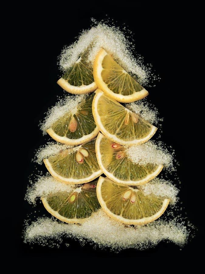 Δημιουργικό χριστουγεννιάτικο δέντρο φιαγμένο από φέτες λεμονιών σε ένα απομονωμένο ο Μαύρος υπόβαθρο Το χιόνι είναι όπως τη ζάχα στοκ φωτογραφία με δικαίωμα ελεύθερης χρήσης