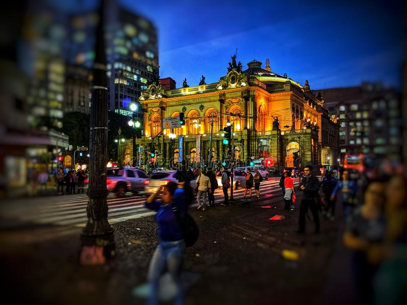 Δημοτικό θέατρο - São Paulo στοκ εικόνα