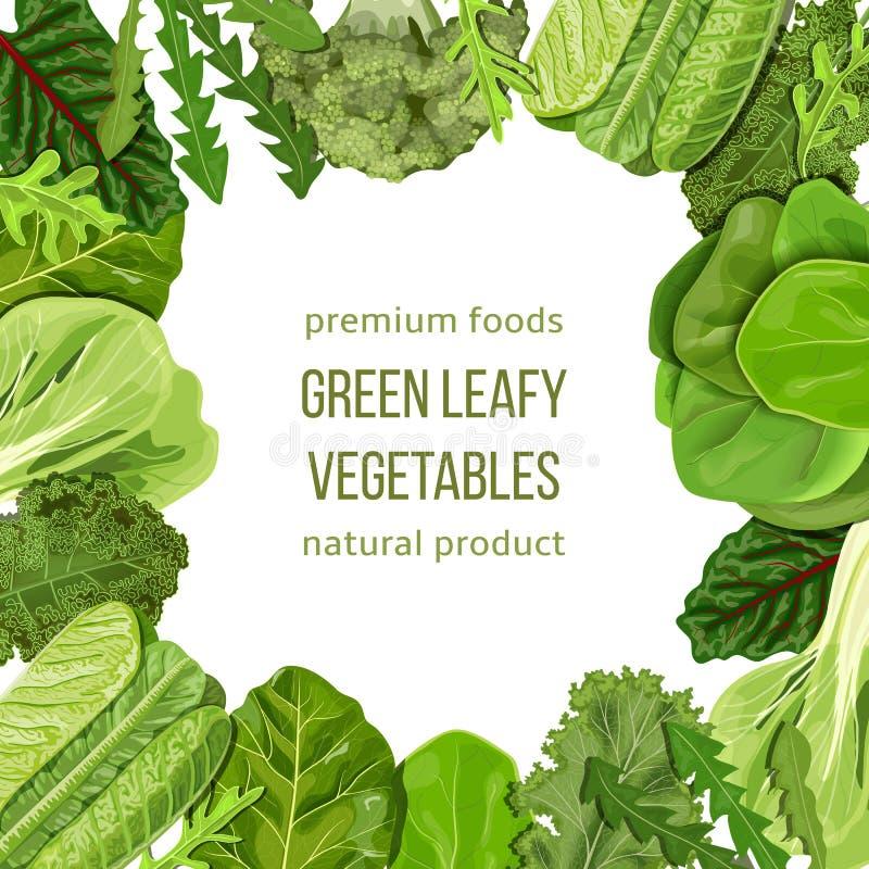 Δημοφιλές πλαίσιο πράσινων φυλλωδών λαχανικών, εγκιβωτισμός, οριοθέτηση πρότυπο καρτών Κείμενο, διάστημα αντιγράφων Σπανάκι κ.λπ. στοκ φωτογραφία