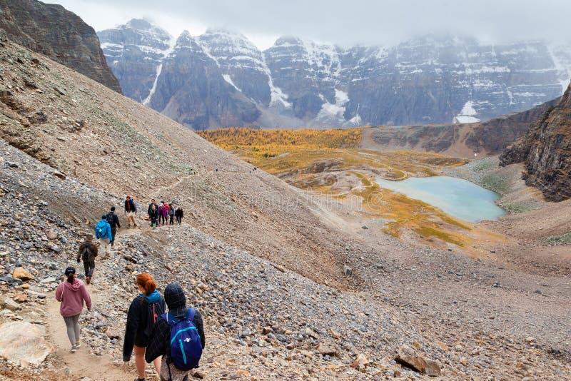 Δημοφιλές ίχνος πεζοπορίας στο Canadian Rockies στοκ εικόνες