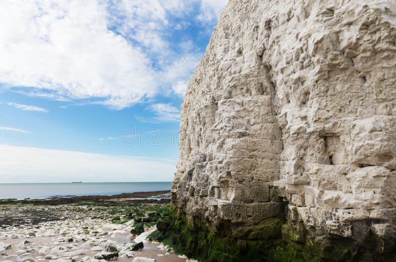 Δημοφιλής άσπρη απότομων βράχων βοτανικής κόλπων ακτή καναλιών Λα Μάγχη αγγλική, στοκ φωτογραφίες με δικαίωμα ελεύθερης χρήσης