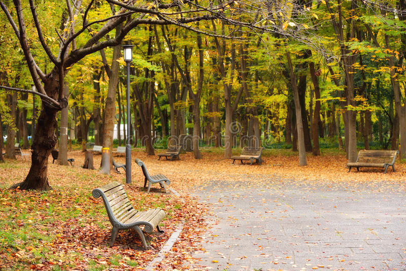 Δημόσιο πάρκο της Οζάκα το φθινόπωρο στοκ φωτογραφίες