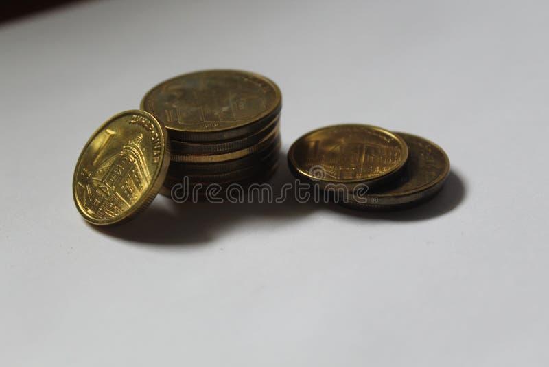 Δηνάριο, σερβικά νομίσματα νομίσματος rsd στοκ εικόνα με δικαίωμα ελεύθερης χρήσης