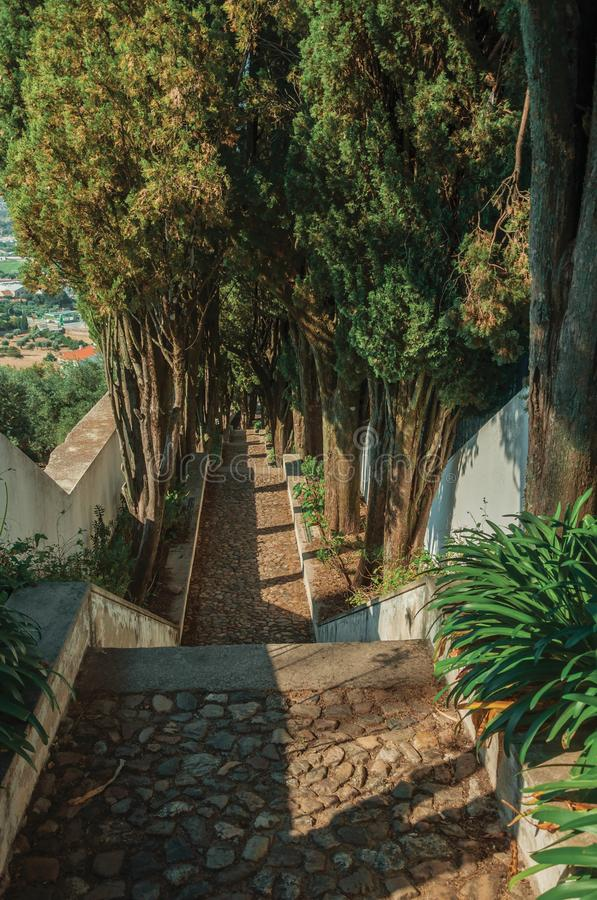 Διάβαση κυβόλινθων με τα βήματα που πηγαίνουν κάτω από το λόφο στοκ φωτογραφία με δικαίωμα ελεύθερης χρήσης