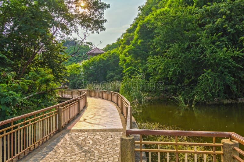 Διάβαση πεζών γεφυρών στην προκυμαία, στο δάσος στοκ εικόνα