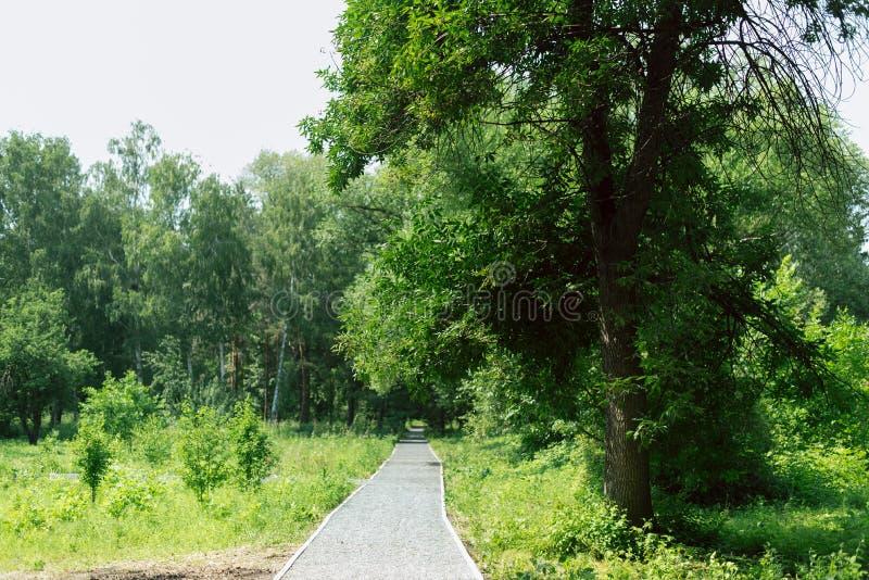 Διάβαση πεζών και κεραμίδια γρανίτη στο πάρκο θέση τουριστών στον κήπο στοκ εικόνα με δικαίωμα ελεύθερης χρήσης
