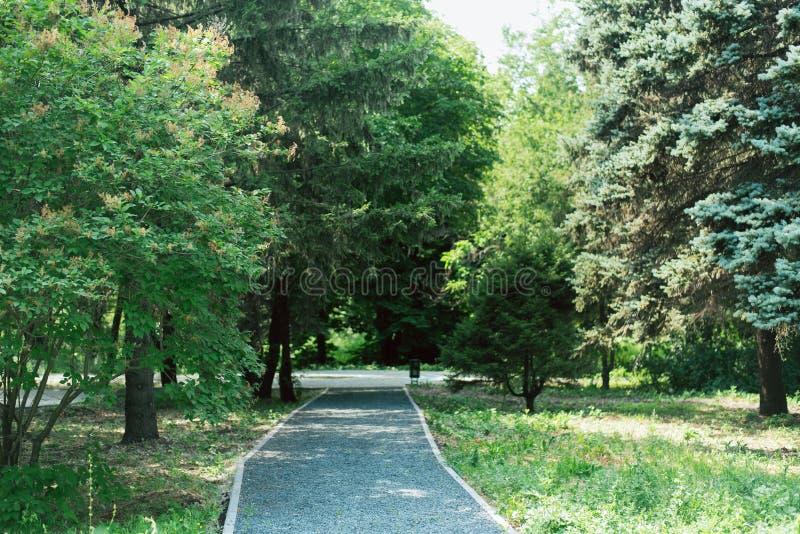 Διάβαση πεζών και κεραμίδια γρανίτη στο πάρκο θέση τουριστών στον κήπο στοκ φωτογραφία με δικαίωμα ελεύθερης χρήσης
