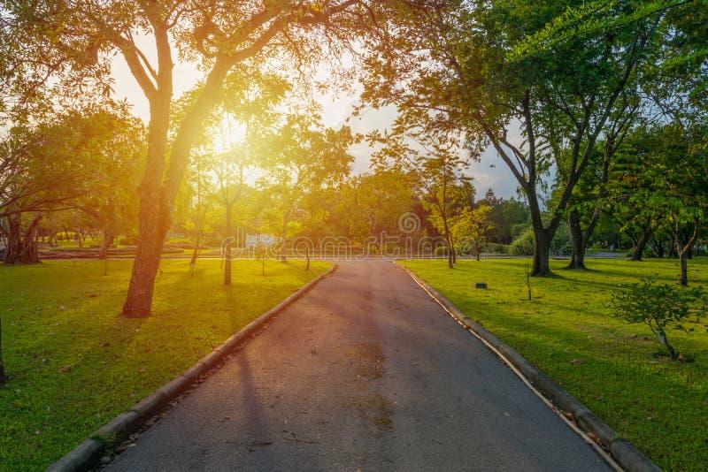 Διάβαση πεζών στο πάρκο στοκ φωτογραφία με δικαίωμα ελεύθερης χρήσης