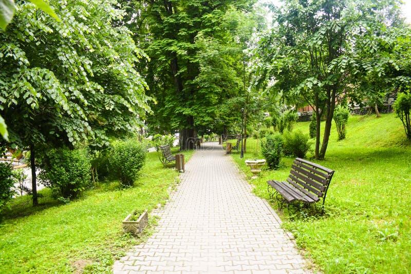 Διάβαση συγκεκριμένων πεζοδρομίων στο πράσινο πάρκο πόλεων με τα πράσινα δέντρα και τους κενούς πάγκους Κήπος στην αστική πόλη στ στοκ εικόνα