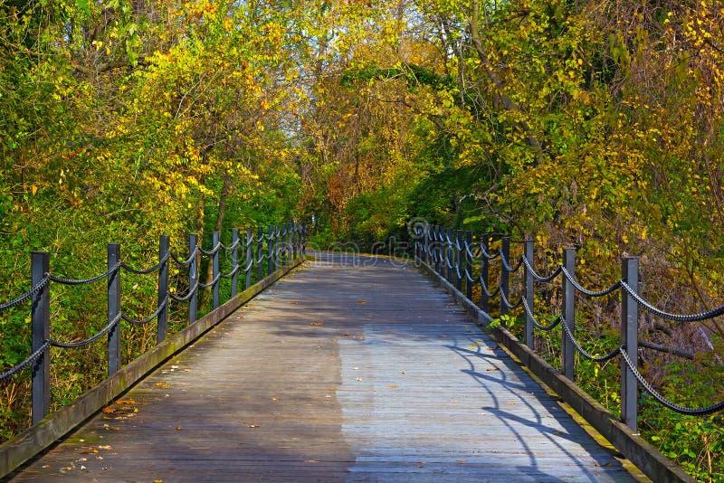 Διάβαση το πρώιμο φθινόπωρο στο Άρλινγκτον, Βιρτζίνια στοκ φωτογραφία με δικαίωμα ελεύθερης χρήσης