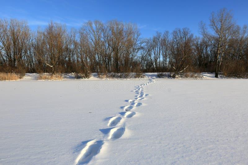 Διάβαση το χειμώνα στοκ εικόνα με δικαίωμα ελεύθερης χρήσης