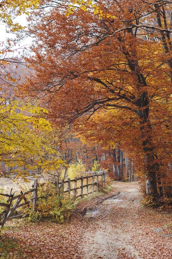 Διάβαση φθινοπώρου στοκ φωτογραφία