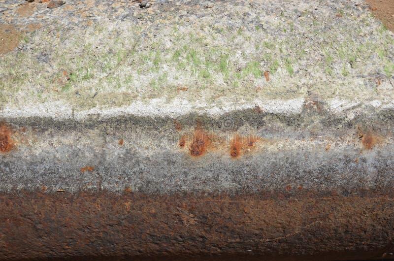 Διάβρωση μετάλλων & πράσινο ζιζάνιο στοκ φωτογραφία με δικαίωμα ελεύθερης χρήσης