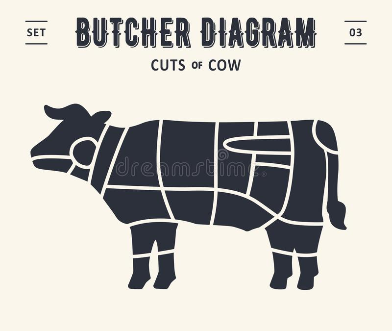 Διάγραμμα και σχέδιο χασάπηδων - βόειο κρέας, αγελάδα διανυσματική απεικόνιση