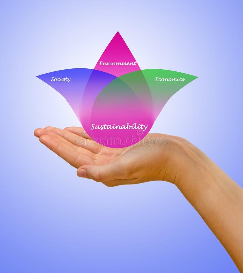 Διάγραμμα της ικανότητας υποστήριξης στοκ εικόνα με δικαίωμα ελεύθερης χρήσης