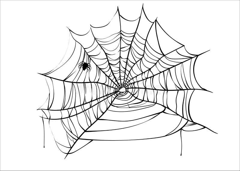 Διάνυσμα αποκριών spiderweb με την αράχνη που απομονώνεται στο λευκό διανυσματική απεικόνιση