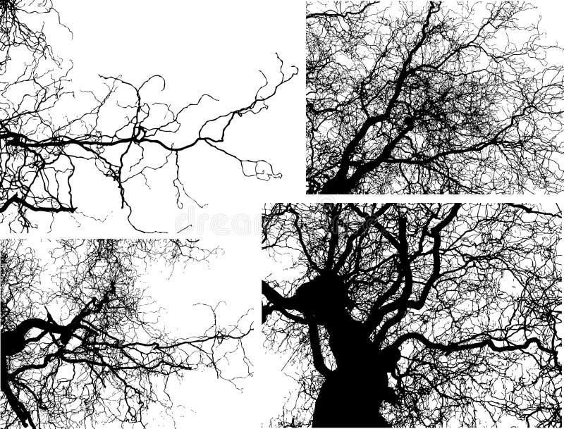 διάνυσμα δέντρων κλάδων διανυσματική απεικόνιση