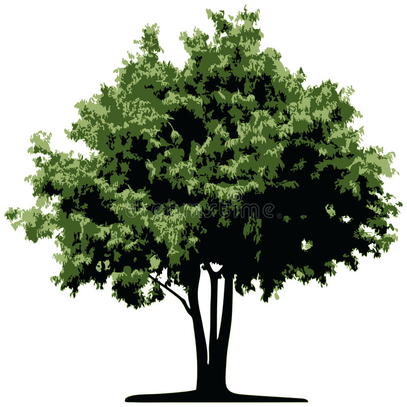 διάνυσμα δέντρων διανυσματική απεικόνιση