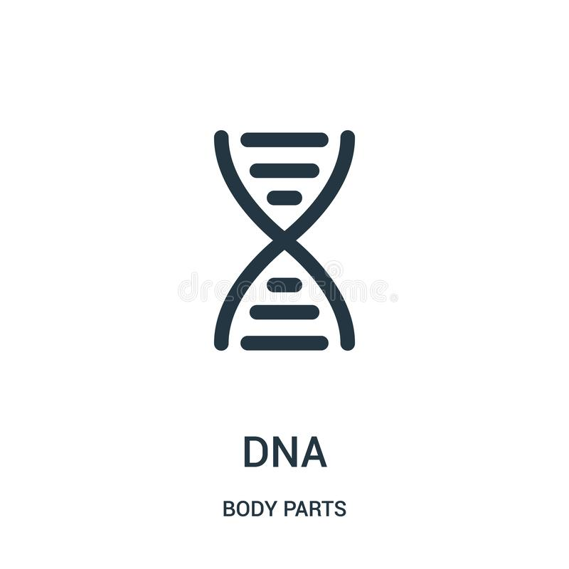 διάνυσμα εικονιδίων DNA από τη συλλογή μελών του σώματος Λεπτή διανυσματική απεικόνιση εικονιδίων περιλήψεων DNA γραμμών απεικόνιση αποθεμάτων