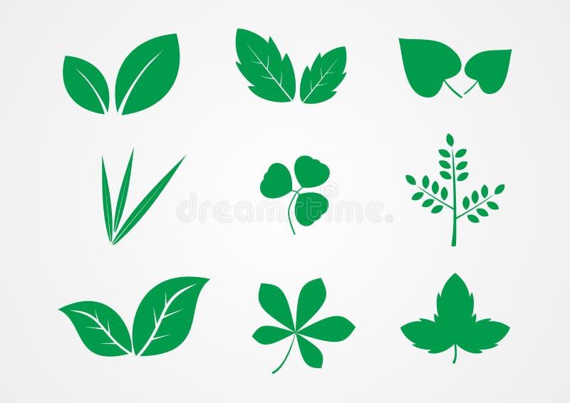 Διάνυσμα εικονιδίων φύλλων και φυτών ελεύθερη απεικόνιση δικαιώματος