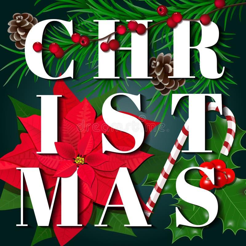 διάνυσμα καρτών απεικόνισης Χριστουγέννων eps10 κλάδοι δέντρων έλατου, Poinsettia, μούρο ελαιόπρινου, caddy κάλαμος, κώνοι, στο μ διανυσματική απεικόνιση