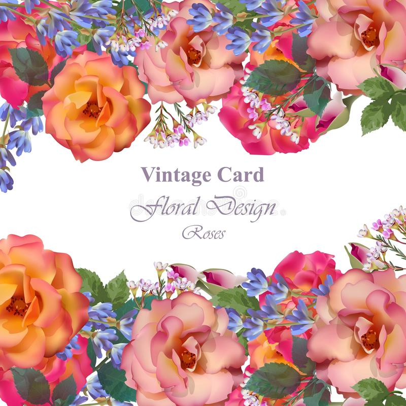 Διάνυσμα καρτών γαμήλιας πρόσκλησης Τριαντάφυλλα και lavender λουλούδια Primrose ρόδινα χρώματα απεικόνιση αποθεμάτων